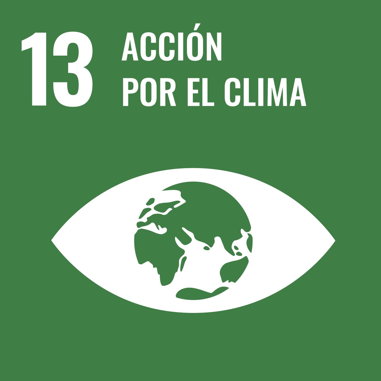accion por el clima